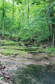 Honeyman State Park Map 63 Best T T T Travel Images On Pinterest Kentucky Camping Ideas