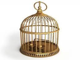 decor vintage bird cage decor decorative bird cages bird cage