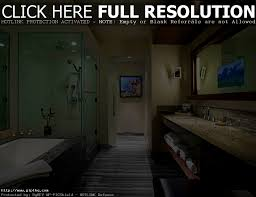 spa bathroom apartments fascinating spa bathroom home interior good master