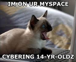 Cat Cocaine Meme - index of forum funny