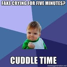 Meme Generator Definition - fake crying for five minutes cuddle time success kid meme