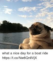 Nice Boat Meme - what a nice day for a boat ride httpstconw6qnllvjx nice meme on me me