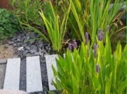 garten und landschaftsbau kassel c ullrich inh manfred ulrich e k garten u landschaftsbau