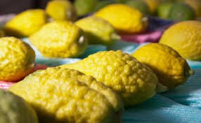 etrog for sale the mostly inedible fruit that can sell for hundreds of dollars in