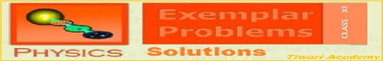ncert exemplar problems class 11 physics in pdf format
