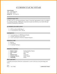 sle of curriculum vitae for job application pdf mock resumes 28 images mock resume haadyaooverbayresort exles