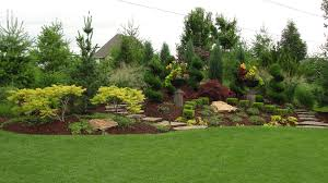 Pictures Of Landscapes by Landscaping Trees For Sale In Kansas City Rosehill Gardens