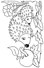 mom baby hedgehog coloring color book