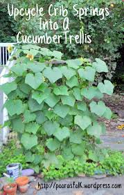 my upcycled cucumber trellis u2013 poor as folk