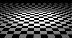 Black And White Checkered Simplistic Black And White Interior Themes Added Lovable Checkered