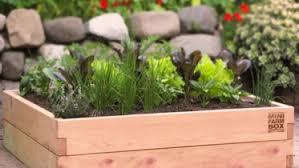 Raised Garden Beds Kits Raised Garden Kits Minifarmbox Cedar Raised Garden Kits