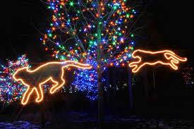 brookfield zoo winter lights weekend picks experience holiday magic at brookfield zoo