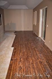 Dogs And Laminate Wood Floors 5 Jpg