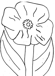 wild california poppy colouring page colouring tube