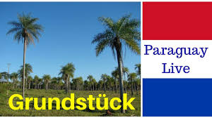 grundstück kaufen von privat in paraguay grundstücke