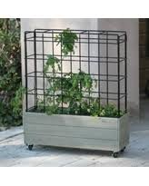 bargains on belham living cottonwood planter on wheels with trellis