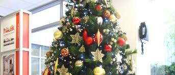 Decorated Christmas Tree Hire by Christmas Tree Hire In Birmingham Services Office Landscapes