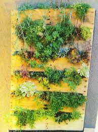 landscaping diy garden ideas garden ideas picture vertical