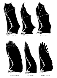 tutorial wings for dragons by sammytorres on deviantart