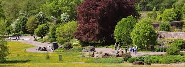 Botanical Gardens Wales Photographs And Article About The Botanic Garden Of Wales We
