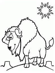 bison coloring pages for kids realistic coloring pages
