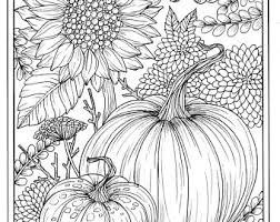 pumpkins and sunflower digital coloring page fall