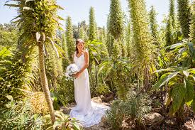 Ventnor Botanic Gardens Where Wedding Dreams Are Made Botanic Weddings