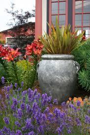 collection garden plant ideas photos best image libraries