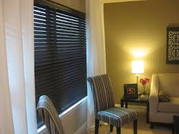 Plastic Blinds Frugal Home Ideas Spray Painting Blinds