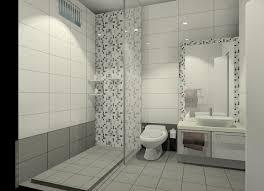Cheap Large Bathroom Tiles Toilet Tiles Design Toilet Ideas Pinterest Toilet Tiles