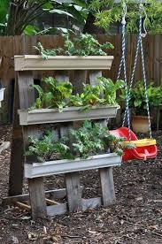 best 20 herb planters ideas on pinterest growing herbs 20 best diy gutter gardens images on pinterest gutter garden yard