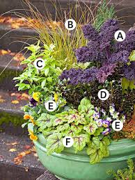 best 25 fall containers ideas on pinterest fall container