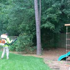 Eliminate Mosquitoes In Backyard by Ace Mosquito Control Pest Control 109 S Fields Cir Chapel