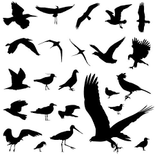 25 trending bird silhouette tattoos ideas on pinterest small