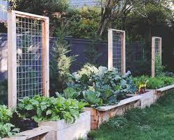 Diy Garden Trellis Ideas 25 Beautiful Diy Trellis For Small Garden Home Design And Interior