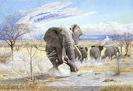 a bull elepahnt in musth in the herd painting art by chris