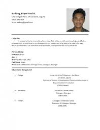 Resume Examples Pdf Template Template Surprising Resume Format Sample For Job
