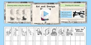 art drawing techniques lesson teaching pack teach packs