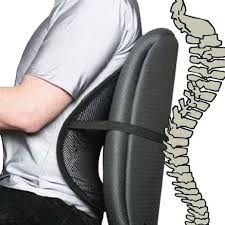Lumbar Chair Mesh Lumbar Back Support For Office Chair Easy Posture Brands