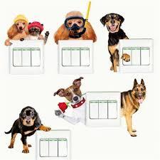 canile chambre oltre 25 fantastiche idee su wall stickers dogs su