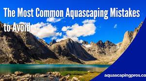 Most Beautiful Aquascapes Beginners Archive