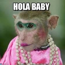 Baby Monkey Meme - hola baby mono meme on memegen
