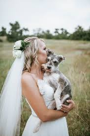 Pictures Of Blind Dogs Best Dog Tiresias The Schnauzer Mix Schnauzer Mix Bridal