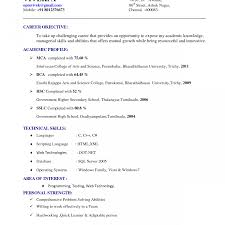 resume template docs goldfish bowl docs resume template free sle internship