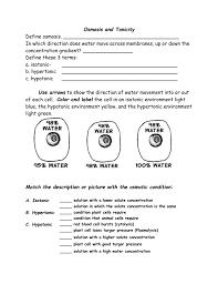 osmosis worksheet answer key worksheets reviewrevitol free