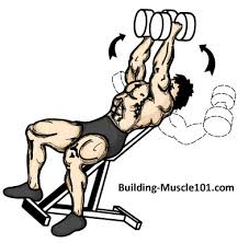 Incline Bench Technique How To Do The Incline Dumbbell Fly By Building Muscle 101