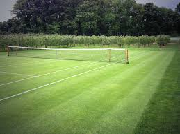 photos backyard tennis best games resource