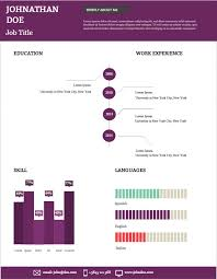 visual and vibrant your new cv create amazing infographics