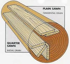 oak vs white oak search wood white