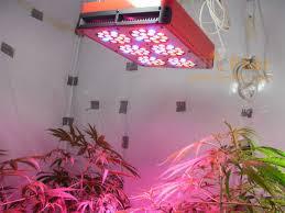 200 watt hps light buy led grow lights 200 watt artificial sunlight replace mh hps 600w